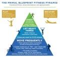 ThePrimalBlueprint