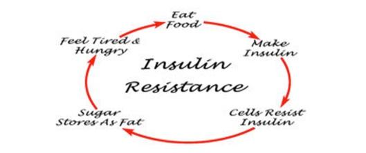 happy#44_insulin