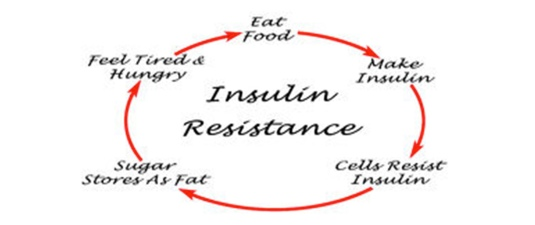 happy#44_insulin